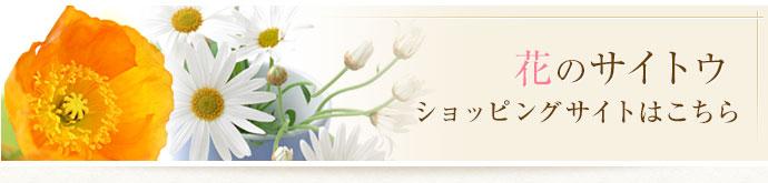花のサイトウショッピングサイト